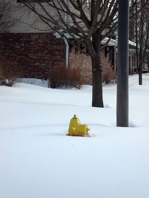 fire hydrant in snow, Fort Collins, Colorado, 2006