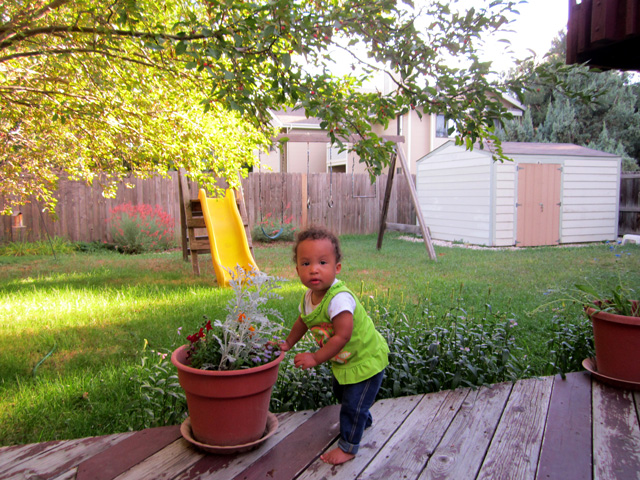 Irene in the back yard, Fort Collins, Colorado, 2014