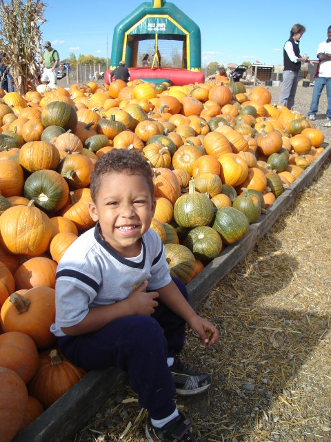 Joachim with pumpkins, Fort Collins, Colorado, 2008