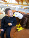 Joachim kissing an eagle, Denver, Colorado, 2013