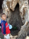 Joachim near a hollow tree trunk, Taos, New Mexico, 2009