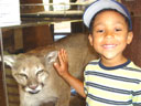Joachim with a mountain lion, Mueller State Park, Colorado, 2010