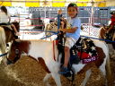Joachim riding Tonto at the Larimer County Fair, Loveland, Colorado, 2009